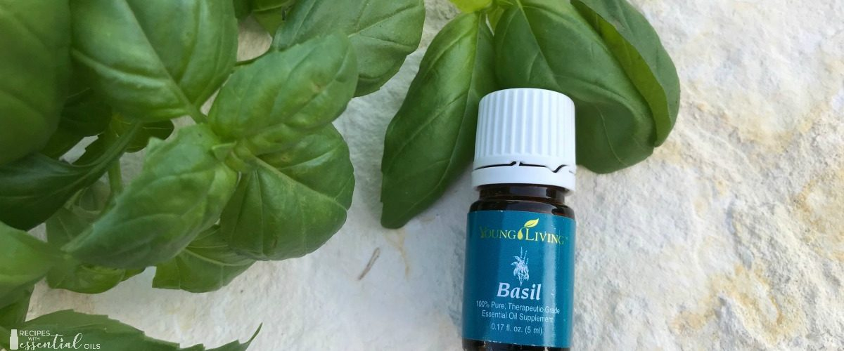 Getting to Know Your Oils – Basil Essential Oil