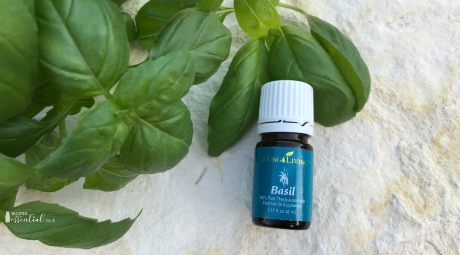 Basil essential oil Recipes and Uses young living