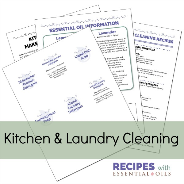 Kitchen & Laundry Cleaning Make & Take