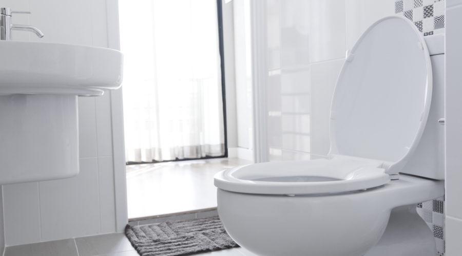 bathroom spray to mask odors