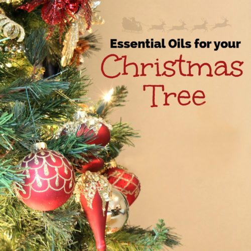 Essential Oils for Your Christmas Tree from RecipesWithEssentialOils.com