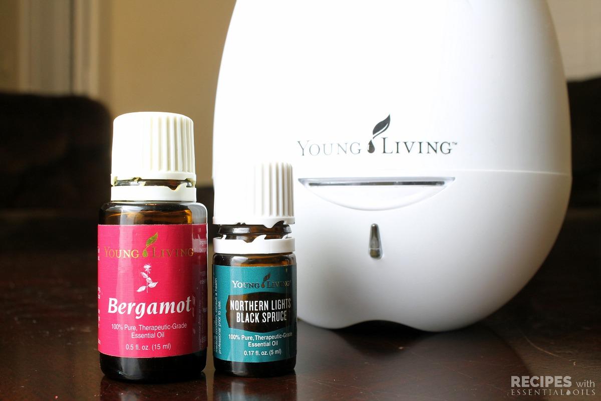 bergamot and black spruce