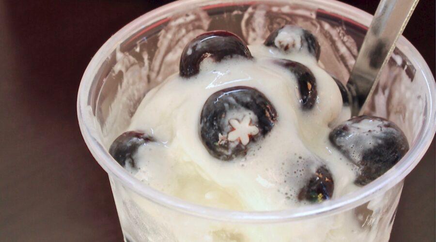 lemon blueberry frozen yogurt recipe
