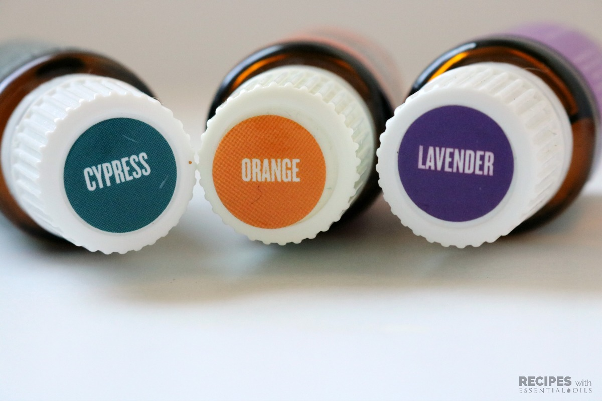 Cypress Orange Lavender