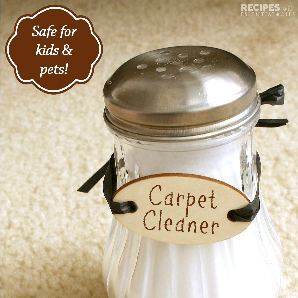 carpet-cleaner-and-deodorizersq