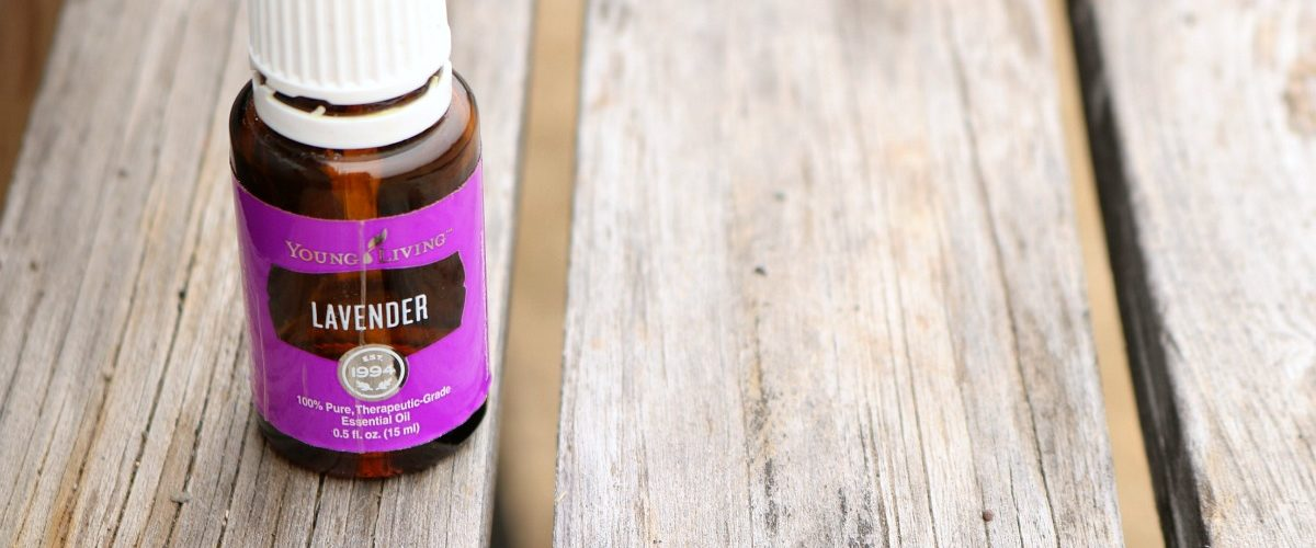 Getting to Know Your Oils – Lavender Essential Oil