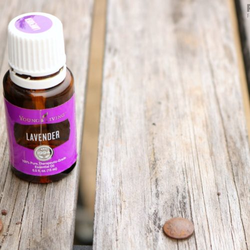 Getting to Know Your Oils: Lavender Essential Oil from RecipeswithEssentialOils.com