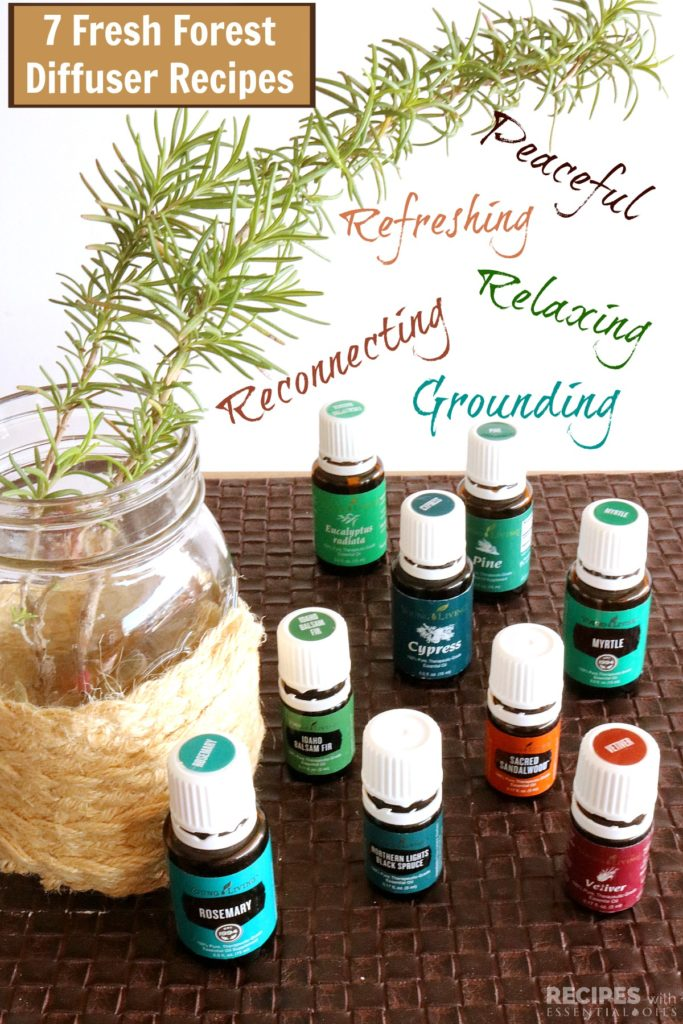 7 Fresh Forest Diffuser Recipes from RecipeswithEssentialOils.com