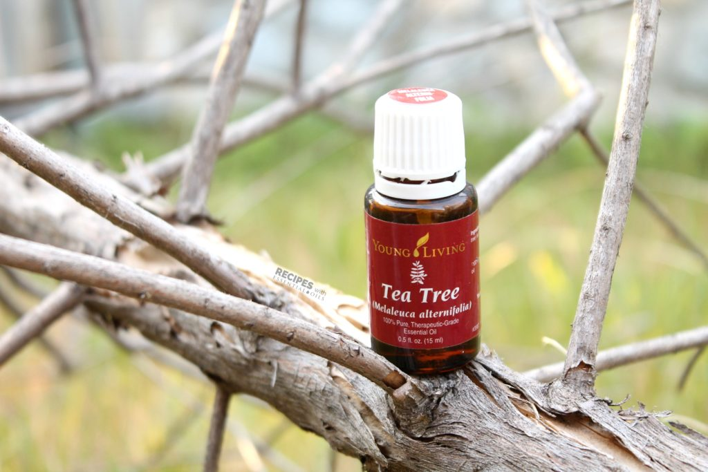 Getting to know your essential oils with Tea Tree essential oil from RecipeswithEssentialOils.com