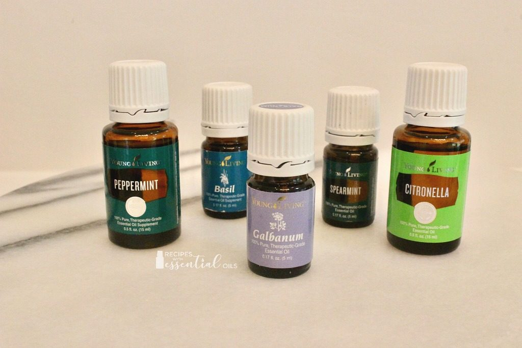essential oils herbaceous top notes