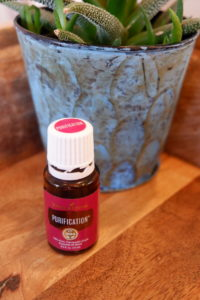 purification essential oil blend young living