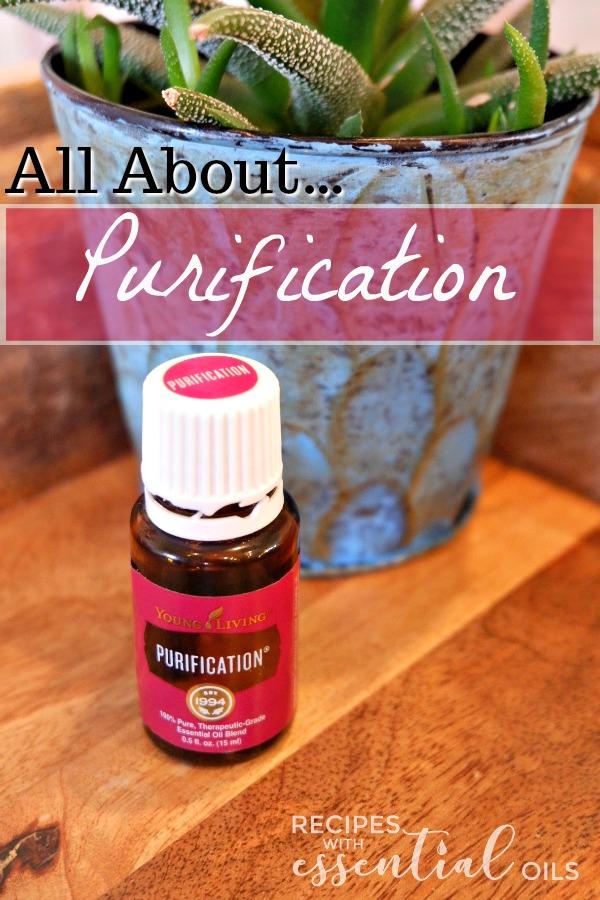 Purification Essential Oil Blend