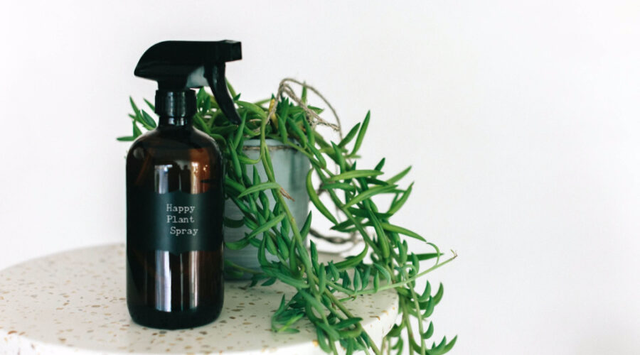natural plant spray for indoor plants