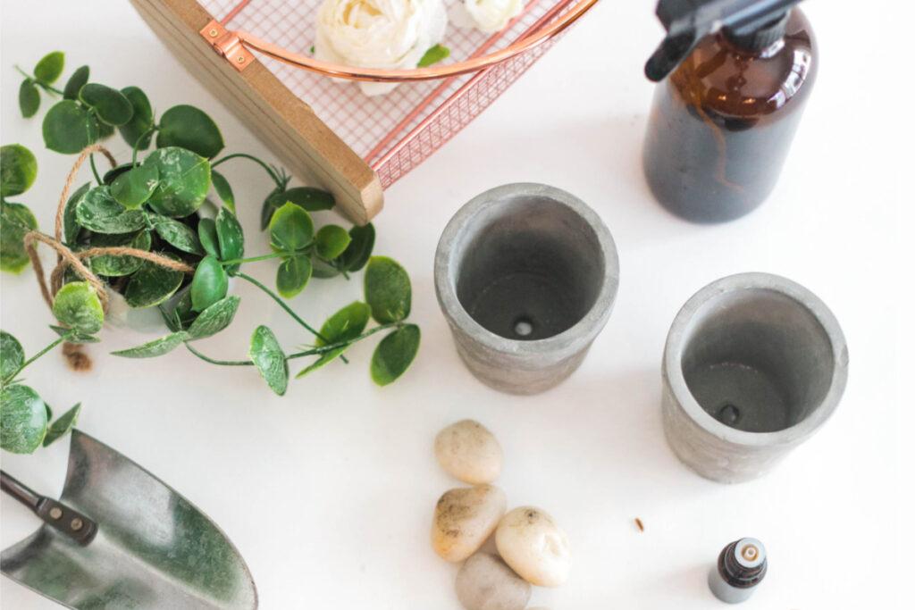 plant spray essential oils gardening